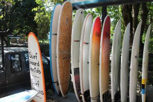 Surfboards - CAS Surfcamps