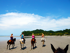 Adventures - Horseback Riding